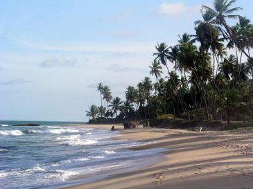 Pico tradicional do surf, a Baía da Traição é garantia de boas ondas. Foto: Reprodução